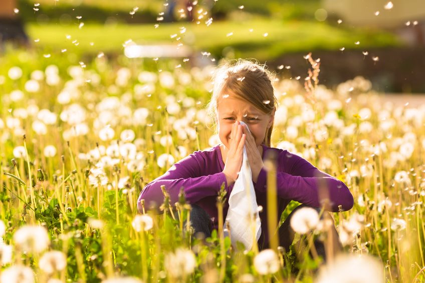 Suffering from Fall Allergies? So are 32 Million Americans